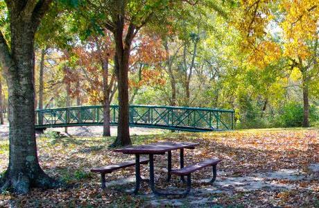 Friendswood Randolph Park, Friendswood, Friendswood park